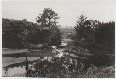 Pakuranga Hunt Club crossing the dam on Archie Millen's farm.; c1948; 2017.376.33