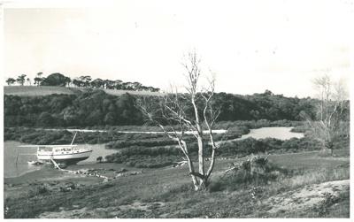 Wakaaranga Creek; Howick & Pakuranga Times; 1972; 2016.429.23
