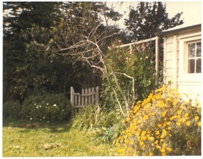 Hawthorndene; La Roche, Alan; 1982; 2016.244.20