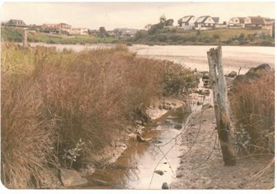 Wakaaranga Creek; La Roche, Alan, Howick; 1/06/1983; 2016.416.12