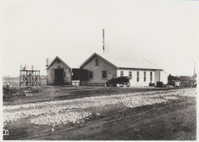 The East Tamaki Dairy Factory; c1920; 2018.157.60
