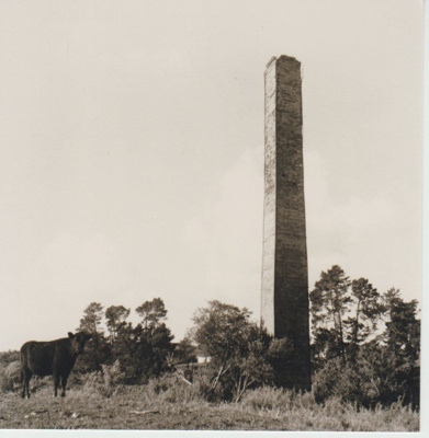 Granger's brickworks chimney; McCaw, John; 1970; 2018.151.11