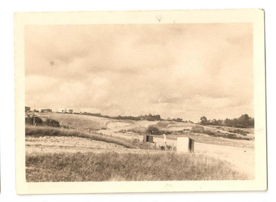"Photograph: ""Looking to section from main road""; Mr Gregory; 00033"