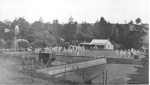 Old Howick Bowling Club; c. 1910; 8007