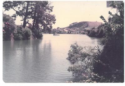 Panmure Lagoon; La Roche, Alan; 1/03/1982; 2017.245.01