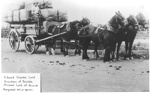 Team of Horses & wagon of hay bales - Edward Lord, Grandson of Fencible Michael Lord; 1917; 9100