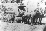 Horse Drawn School Bus; C. 1900; 9106