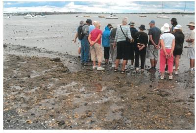 Viewing fossils at Bucklands Beach; La Roche, Alan; 1/03/2013; 2017.034.88