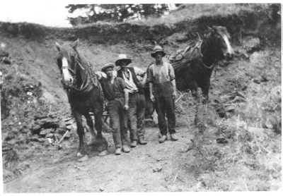 Shaw Horse Team at Pigeon Mountain Quarry - gather...