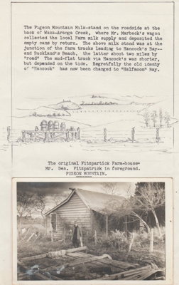 Fitzpatrick's cottage in Pigeon Mountain Road; 1/11/1981; 2018.109.25