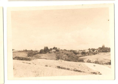 "Photograph: ""View from section to the west.""; Mr Gregory; C. 1950; 00040"