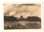"""Photograph: """"Looking S E from 3 bedroom""""; Mr Gregory; C. 1950; 00042"""