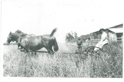 Haymaking at Hawthorn Farm; 1914; 2016.275.58