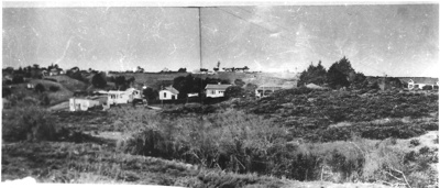 View of Howick looking over Nixon Park area at Sal...