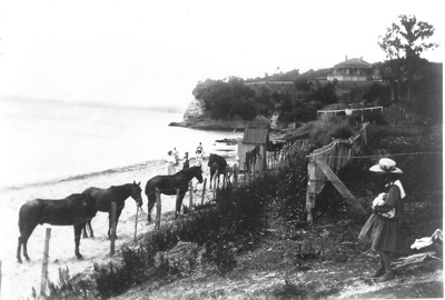 The printed line 'Horses tied up on Howick Beach' ...