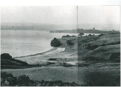 Above Cockle Bay c.1900; Winkleman, Henry; c1900; 2017.195.04