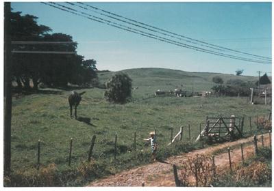 Bradbury's Farm; 1950; 2016.248.22