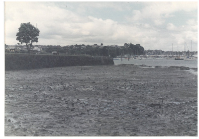 Low tide at Bucklands Beach; Fairfield, Geoff; c1980; 2017.003.56