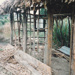 The mail runner's cottage showing the framework under construction at Howick Historical Village.; La Roche, Alan; June 1992; P2021.83.28