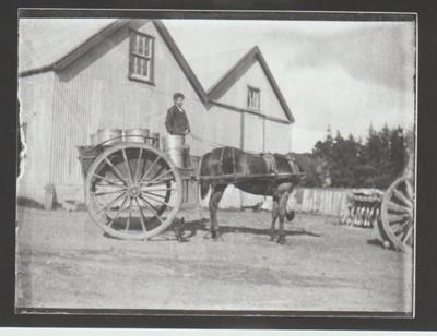 Milk cart at Bell's Barn.; Howick & Pakuranga Times; c1904; 2018.054.26