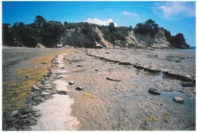 Eastern Beach cliffs; La Roche, Alan; 2010; 2017.052.14