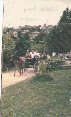 A horse and gig giving rides at a Gala Day at Howick Historical Village.; 1984; P2021.176.06