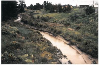Pakuranga creek near Highland Park; La Roche, Alan; 1988; 2016.486.84