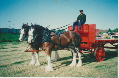 A J Martin and his Clydesdales; 2017.453.44