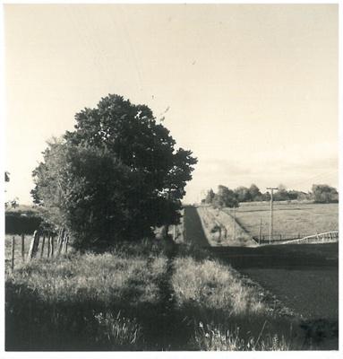 Glenmore Road, Pakuranga; McCaw, John; 1970; 2017.228.00