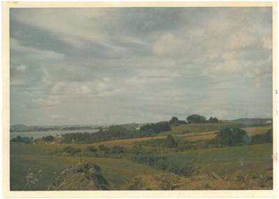 Litten's farm; c1950; 2016.164.105