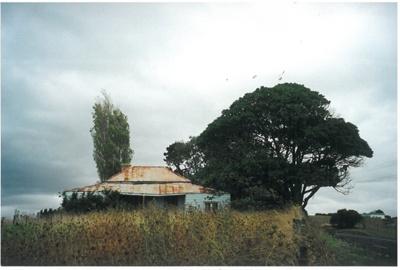 Martin Kelly's homestead at Maraetai; La Roche, Alan; 1/03/2000; 2017.304.59