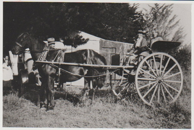 Hannah Grigg and another woman in a horse and buggy; 2017.450.35