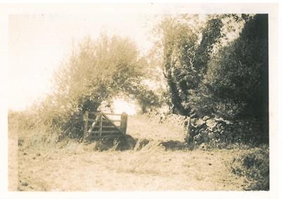 East Tamaki farm gate; Hattaway, Robert; 2017.178.76