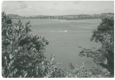 Looking across the Tamaki River; La Roche, Alan; 1991; 2017.262.19