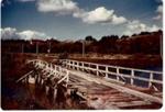 Turanga Creek Bridges; Rev. Robert (Bob) Hattaway (1917-1992); 1981; 4123a&b