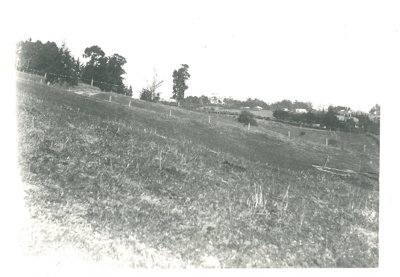 Howick from Stockade Hill; 1904-1906; 2016.112.0016a