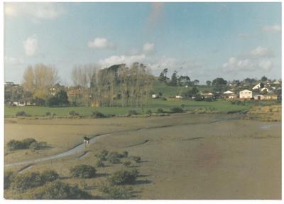 Wakaaranga Creek; Fairfield, Geoff (?); 1981; 2016.440.33