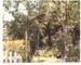 Hawthorn Farm; Hattaway, Robert; 1982; 2016.281.67