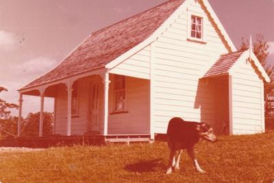 A dog outside Sergeant Barry's cottage, Howick Historical Village.; La Roche, Alan; February 1980; P2020.125.03