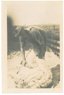 Blade shearing; Hattaway, Robert; 1914; 2016.274.55
