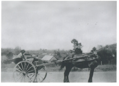 Henry Crawford in a horse and buggy on Stockade Hill.; 2016.314.71