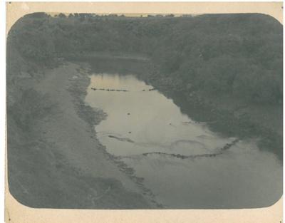 Eel traps in a creek in Mangere; Fairfield, Geoff; 1/04/1973; 2017.135.06