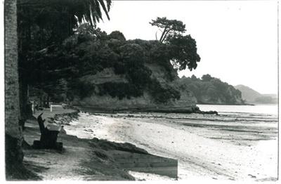 Eastern Beach erosion; Eastern Courier; c1998; 2017.046.09