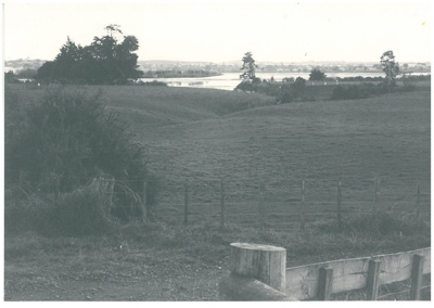 Looking towards the Tamaki River from the end of Waiouru Road; La Roche, Alan; 1/07/1991; 2017.185.88