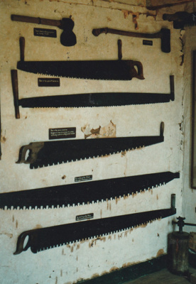 Display of saws in Carter Cottage (renamed Maher-Gallagher Cottage) at the Howick Historical Village.; Flett, Kate; 16 July 1984; P2020.18.03