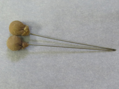 2 short hat pins. Silver needle with brown leather...