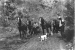 Pigeon Mountain Quarry - Shaw Brother's Draught Horses; c. 1930; 9121