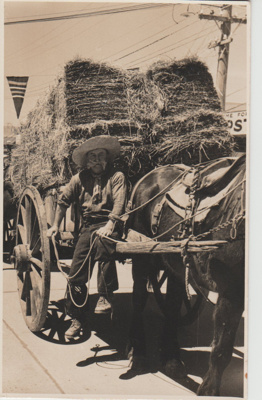 Dufty Bell with his horse-drawn dray loaded with hay; 1947; 2017.554.38