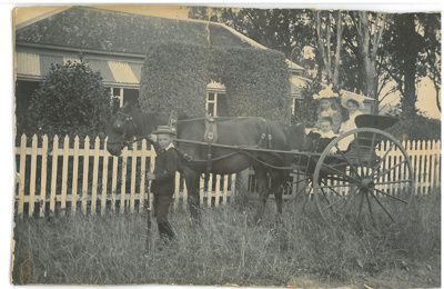 Hattaway children with horse and trap; c1900; 2016.244.14a