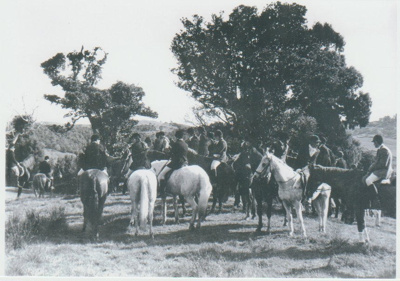 Pakuranga Hunt c1955; Fransham Fay; c1955; 2017.397.64
